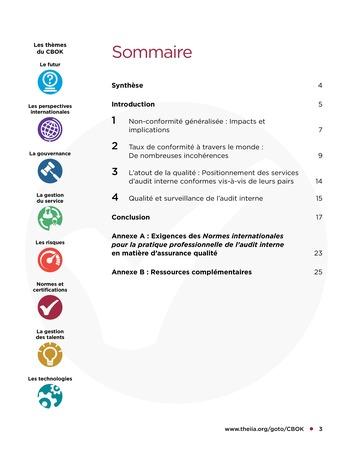 Programme d'assurance et d'amélioration qualité de l'audit interne page 3