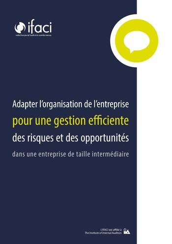 Adapter l'organisation de l'entreprise pour une gestion efficiente des risques et des opportunités dans une entreprise de taille intermédiaire page 1