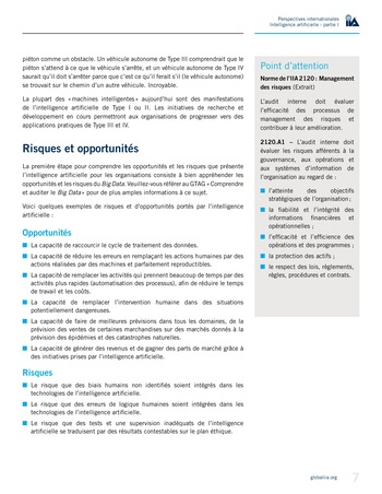 Perspectives Internationales - Intelligence artificielle : quelles considérations pour l'audit interne ? page 7