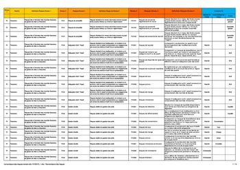 Nomenclature des risques (Cartographie des risques, 2e éd.) page 1