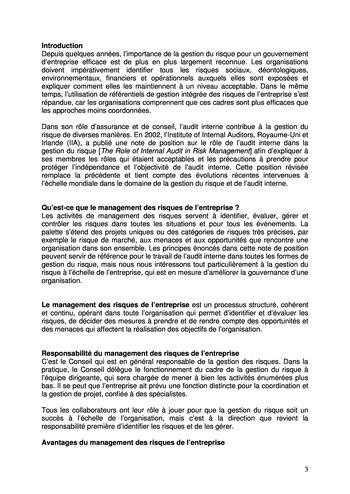 Prise de position - Le rôle de l'audit interne dans le management des risques de l'entreprise /IIA page 3