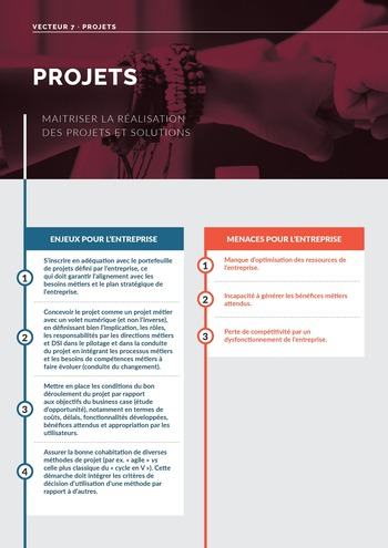Guide d'audit de la gouvernance du Système d'Information de l'entreprise numérique - 2ème édition page 60