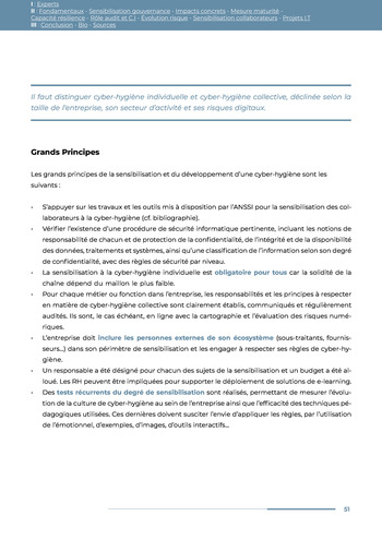 Guide des risques cyber - Ifaci 2.0 / 2020 page 51