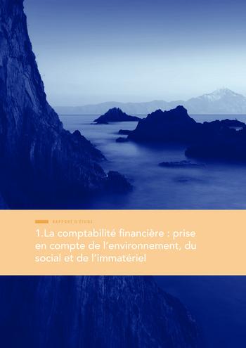 Quelles connexions entre la comptabilité financière et le non-financier ? / Version longue / Audencia page 15