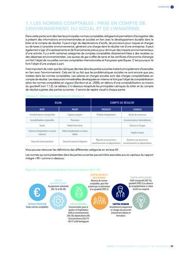 Quelles connexions entre la comptabilité financière et le non-financier ? / Version longue / Audencia page 17