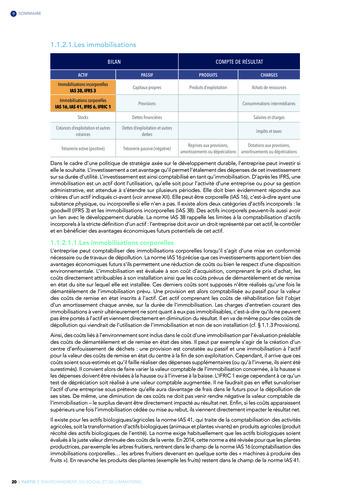 Quelles connexions entre la comptabilité financière et le non-financier ? / Version longue / Audencia page 20