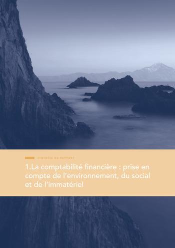 Quelles connexions entre la comptabilité financière et le non-financier ? / Synthèse / Audencia page 9
