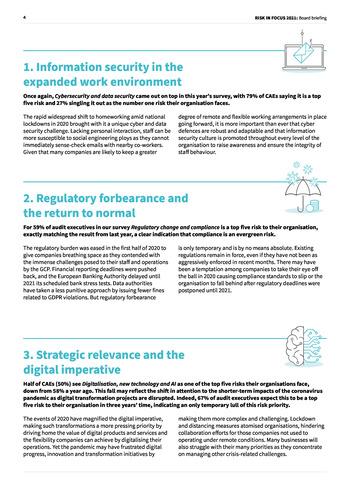 Risk-In-Focus-2021-Board-Briefing-EN page 4