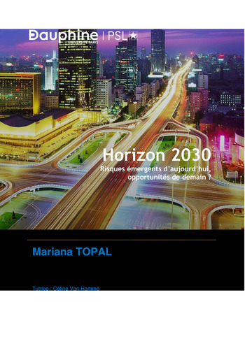 Prix Olivier Lemant 2020 - Horizon 2030 : Risques émergents d'aujourd'hui, opportunités de demain ? page 1